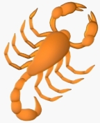 Scorpion research papers
